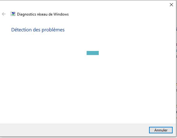 Diagnostic réseau Windows