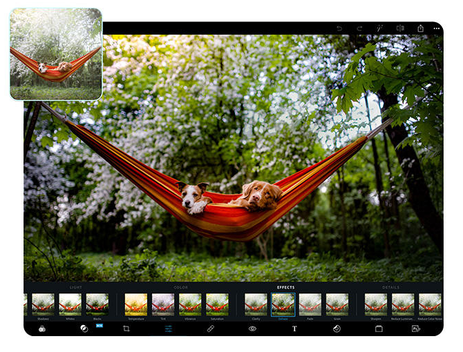 Adobe Photoshop Express, Alternative à Photpshop 2020